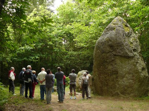 Visite des mégalithes du Bois de Fourgon - JNA 2016
