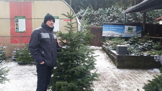 Weihnachtsbaum-Kauf 2017 (Foto H. Mohr)