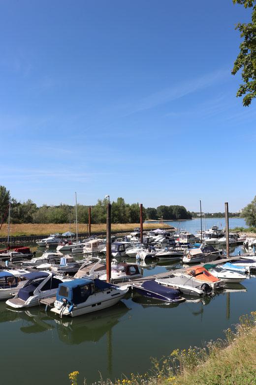 Kleine Marina in Zündorf für Freizeitskipper