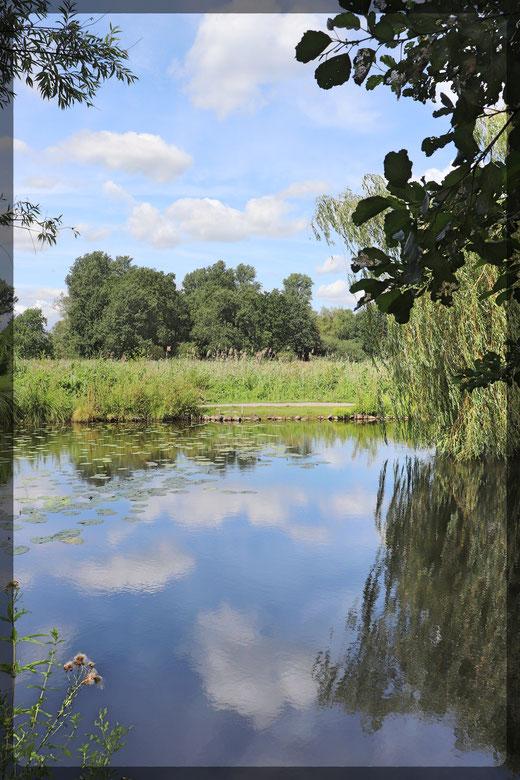 Wolkenbilder am Weiher des Naturschutzhofes der NABU