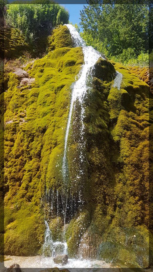 Der schönste Wasserfall der Eifel ist ein Highlight dieser Wanderung