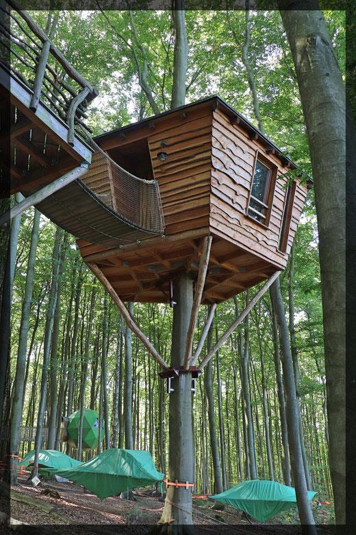 Robins-Nest: Baumhäuser und Schwebezelte zum Übernachten mieten