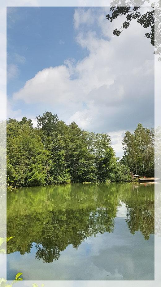 Stille Landschaften 3 - Am Angelpark Schermbeck