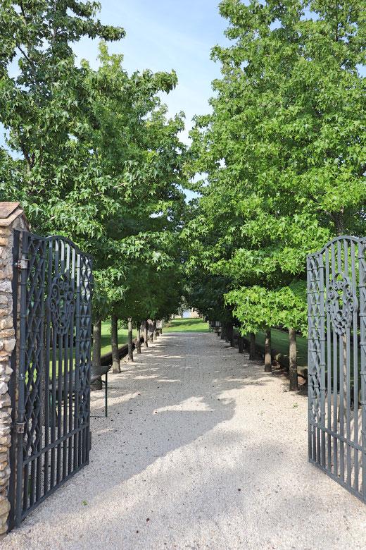Eingang zum 'toskanischen Garten' auf dem Weingut Kloster Kraul