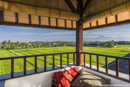 Bali Houses and Villas for sale.