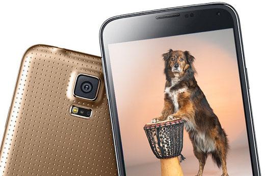 Leinenbild von Handyfoto oder Smartphonfoto