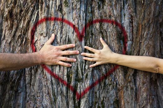 Zwei Hände greifen in ein gemaltes Herz auf einem Baumstamm