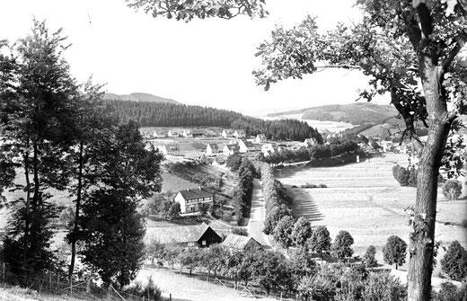 """Streuobstwiesen in Niederbremscheid, im Hintergrund das """"Langeloh"""" als Neubaugebiet"""