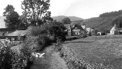 """Noch vergnügen sich die """"Martinsgänse"""" im Salweybach: Sallinghausen 1953"""