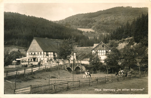 Postkarte um 1930: Privatpension Sternberg