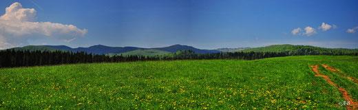 widok z Tarnawy na Bukowe Berdo i Tarnicę