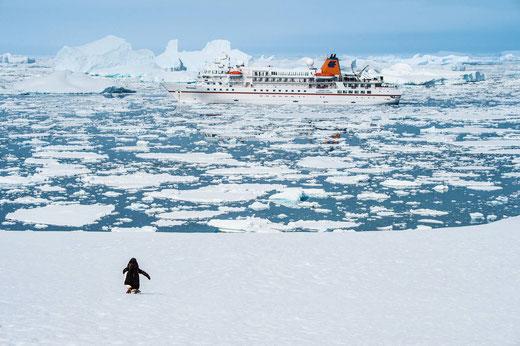 Expeditionskreuzfahrt Spitzbergen