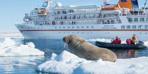 Expeditionskreuzfahrt Grönland