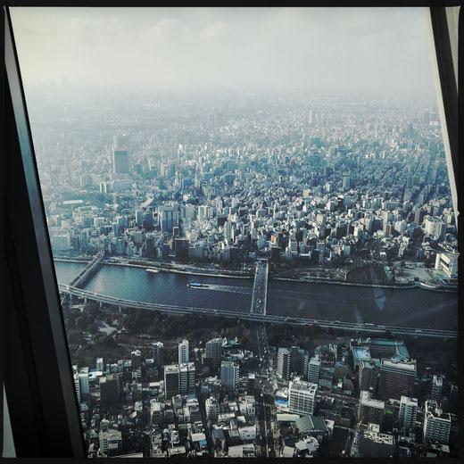 Blick vom Tokyo Skytree (634m, Plattform auf 350m)