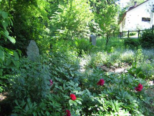 Foto des Grabsteins im Blumengärtli auf dem Altberg