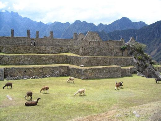 Machu Picchu - ein Ort mit einer beeindruckenden Atmosphäre