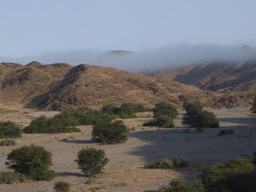 Morgenneben über einem Tal im Kaokoland