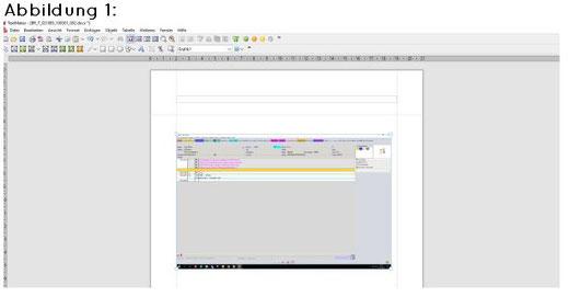 abasoft EVA Praxissoftware Arztsoftware Bildschirmabdruck aus der Fallakte