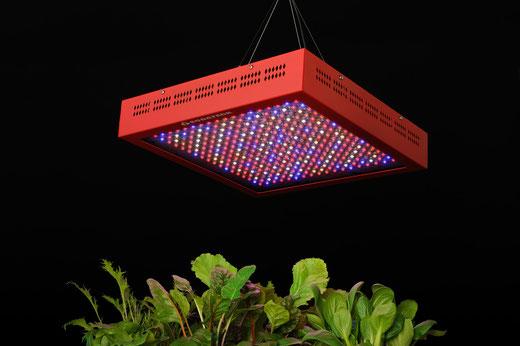 8波長LED  490W