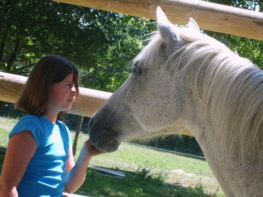 Auprès du cheval, l'enfant peut expérimenter d'autres façons d'entrer en relation. Ce moment partagé avec le cheval participe à la prévention de la délinquance.