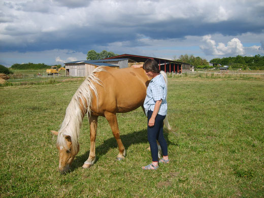 Cultiver un sentiment de bien-être par la relation avec le cheval.