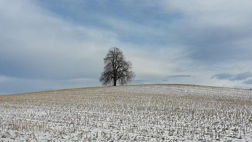 Hollezeit - Winterzeit - Holle, die germanische Muttergötting, Foto Petra Hinze, Frauenwissen und Schamanismus
