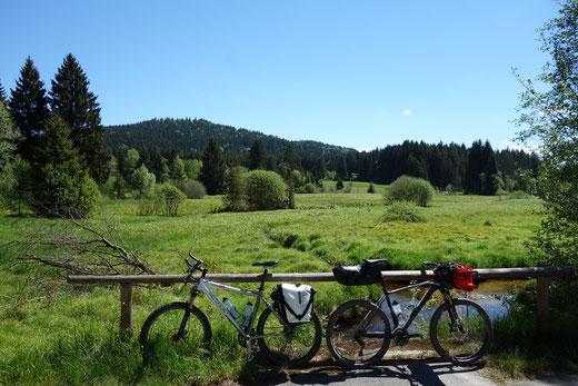 Nationalpark Bayerischer Wald, Bachlauf bei Finster