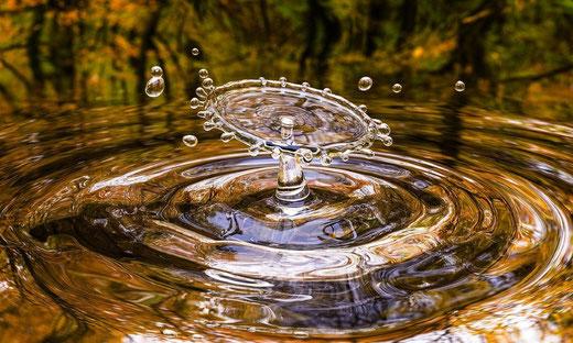 Wasseraufbereitung, Enthärtungsanlagen und Entkalkung von Kern Wassertechnik in Mömbris / Gewässerunterhaltungskosten: Wälder entlasten, Agrarflächen nicht zusätzlich belasten