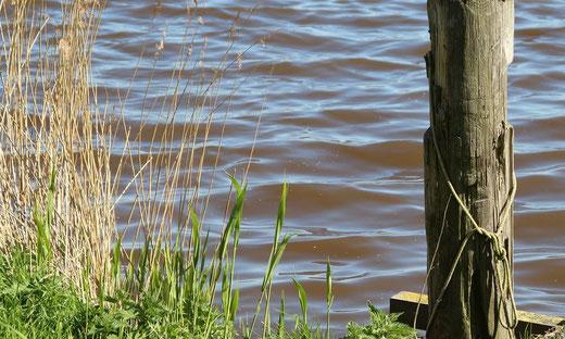 Wasseraufbereitung, Enthärtungsanlagen und Entkalkung von Kern Wassertechnik in Mömbris / Novelle des Wassergesetzes mit Vernunft und Augenmaß / Gewässerschutz ist hohes Gut in Hessen und wird weiter optimiert