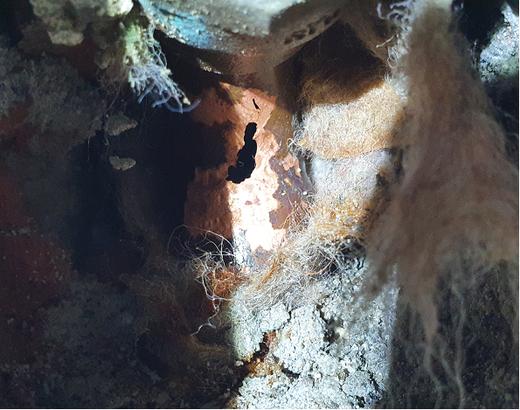 Rohrbruch nach Säurefraß am Kupferrohr