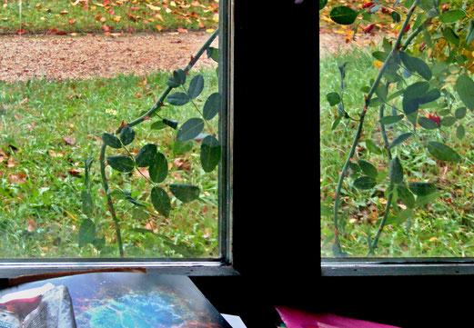 19. November 2018 - Herbst bis dicht vor das Stubenfenster
