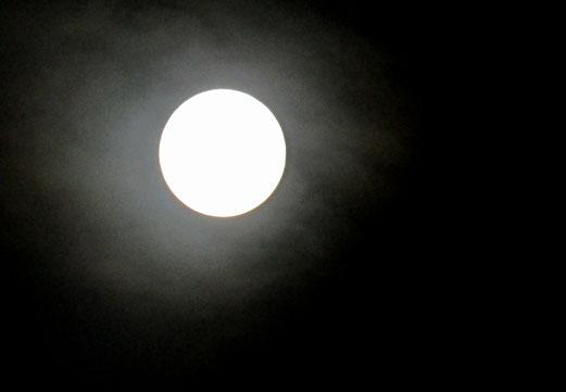 2319 - 29. Juli 2018 - Am Tag zuvor. So war der Mond zu sehen.