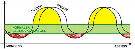 So sieht dein Blutzucker- bzw. Insulinspiegel ohne Frühstück aus.