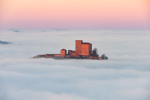 Burg Trifels im Nebelmeer Annweiler Yannick Scherthan