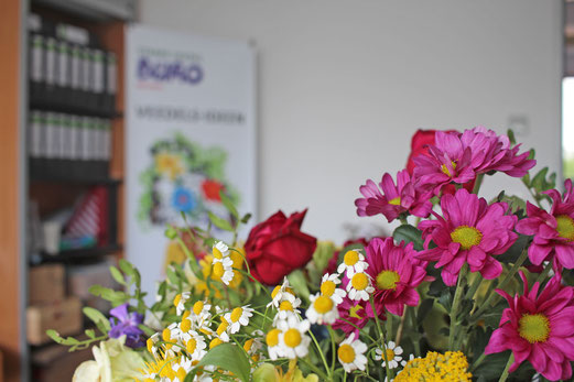 Starke Veedel Büro Blumen
