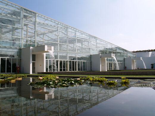 Orto Botanico (Padova 2012) - 2500 mq. di vetri sospesi con sistema a rotules non passanti.