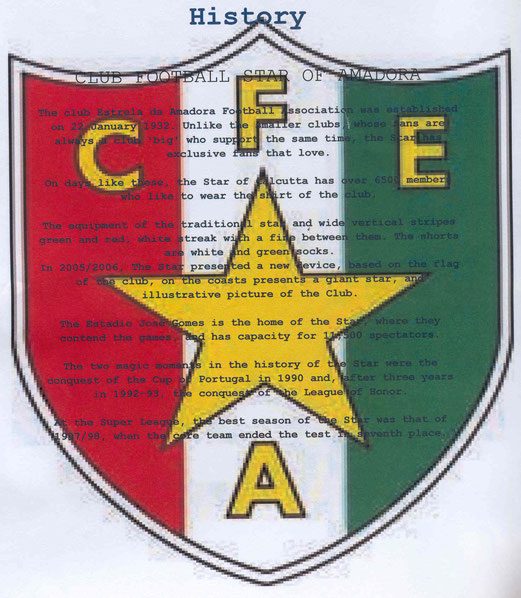 DIN-A4-Blatt mit der Geschichte des Klubs