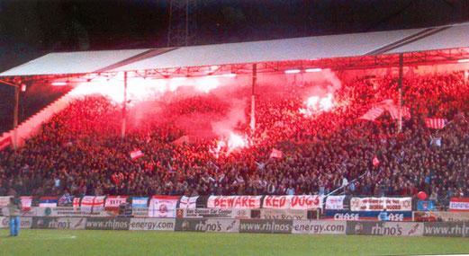 Heimfans von Royal Antwerp FC