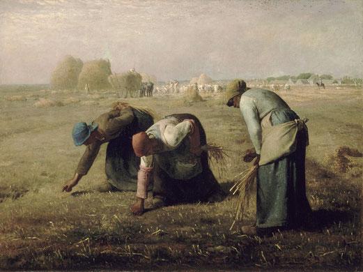 Les glaneuses, Jean-François Millet, 1857,  Huile sur toile, 83,5 × 110 cm, Musée d'Orsay, Paris.