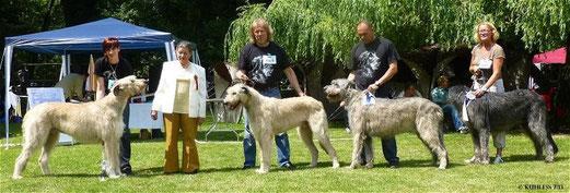 Zeus,Paul,Antaris und Klecks