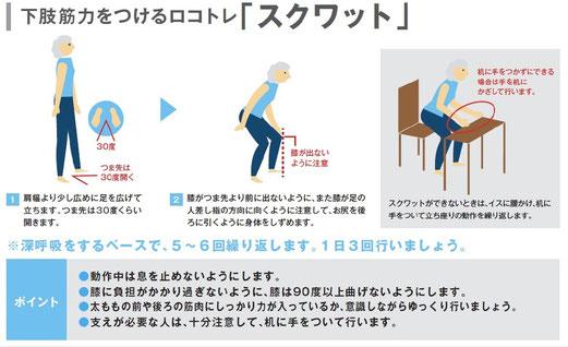スクワット (ロコモパンフレット2013より引用)