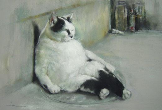 ふてぶてしいドラ猫