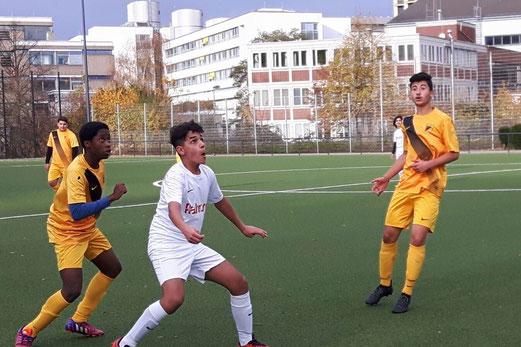 TuS B-Jugend im Heimspiel gegen die B2 der SpVgg. Steele 03/09. - Fotos: lua.