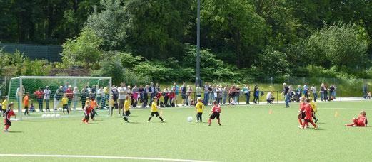 TuS Turnier Tage 2013. - (Foto: mal).