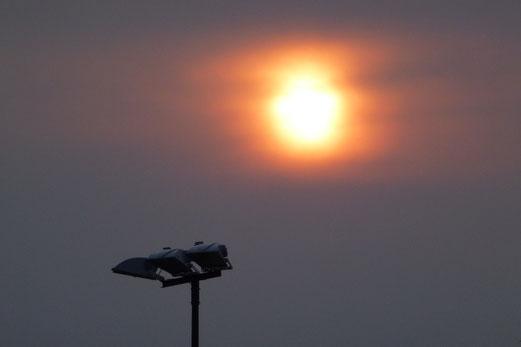 21.08.2012: Sommersonnenabend, stimmungsvoll... (Foto: mal).