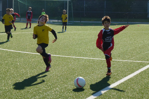 TuS F2-Jugend im Heimspiel gegen die F2 des TuS Essen-West 81 (Foto: mal).