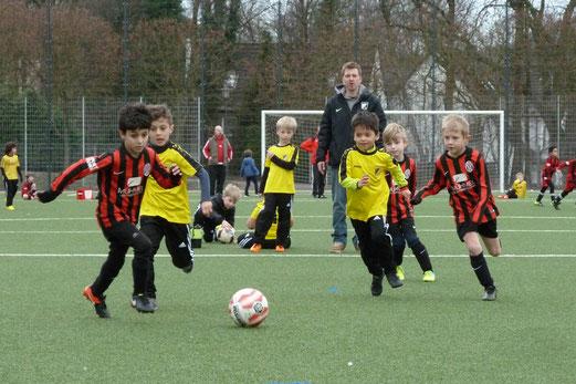 TuS Bambini 1 im Heimspiel gegen SpVgg. Steele 03/09. - Fotos: dabu (1-6), mal (7-13).