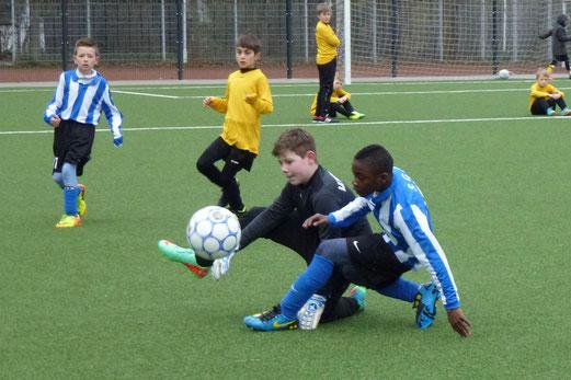 Den meisterschaftsfreien Samstag zum Testspiel genutzt: TuS E1-Jugend gegen SG Altenessen. - (Foto: mal).