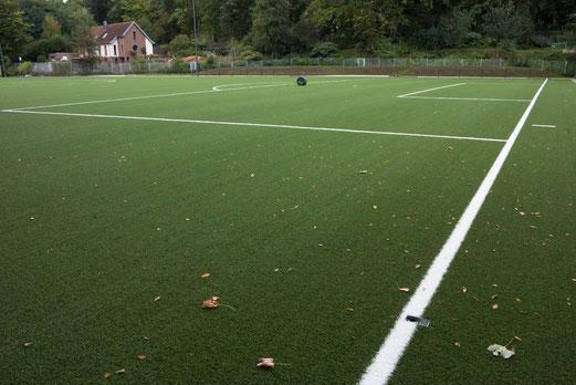 19.09.2012: Nun auch mit Linien. Und Blättern... (Foto: r.f.).