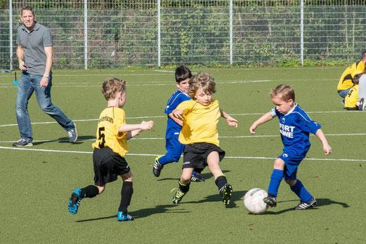 TuS Bambini 2 bei VfB Frohnhausen 2 (3:3), Raumerstraße, 18.10.2014. - Foto: r.f.